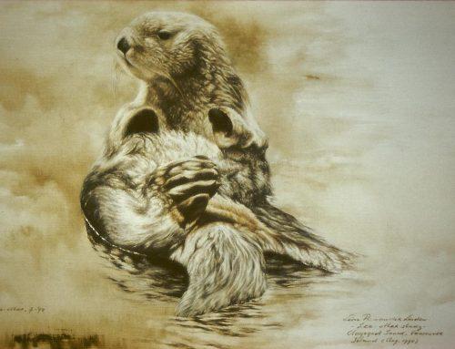 Zee otter